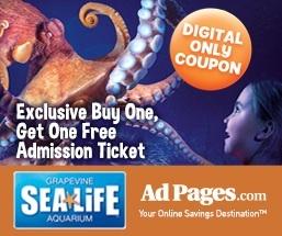 SeaLife_AdPagesBlog_257x215