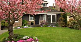 bryant-lawn-4816952-original-jpg