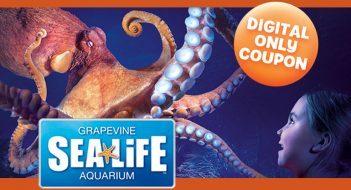 SeaLife_FBCover_851x515_min
