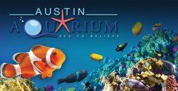 austin-aquarium-1-1-2-6574942-original-jpg