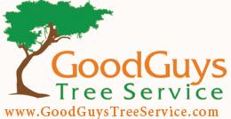 goodguystreeservice